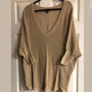 Express Large Carmel V- Neck Sweater